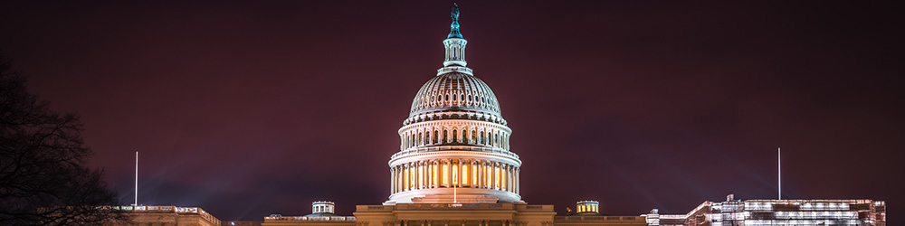 Photograph of the US Capitol at night
